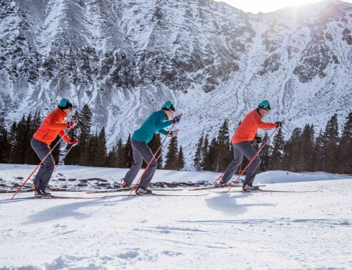 Cross Country, Telemark Coaches Celebrate the Freedom of Free-Heel